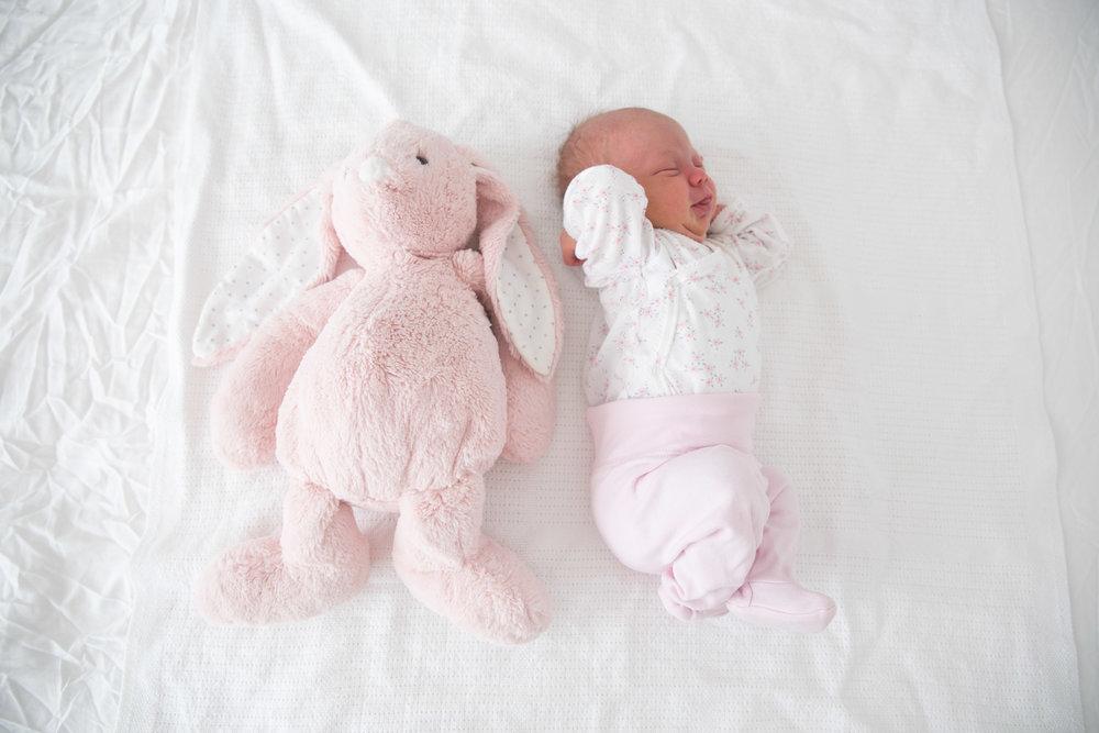 angelica aurell barn.jpg